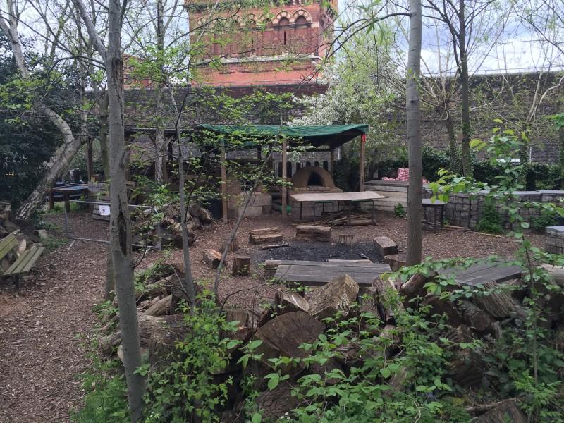 Camley Street Natural Park, King's Cross London