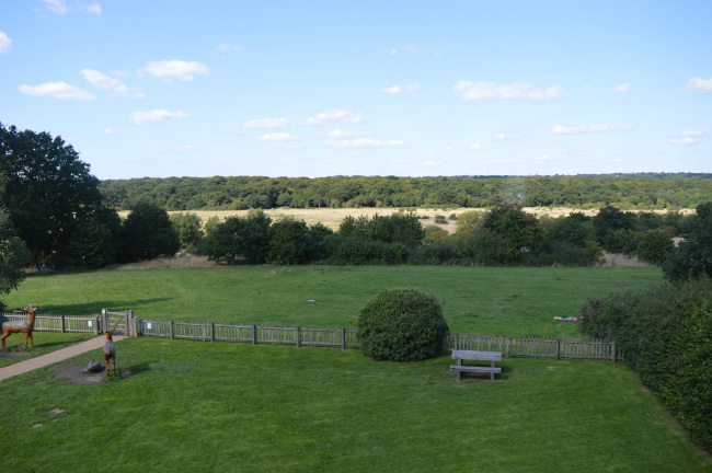 View of Epping Forest from Queen Elizabeth's Hunting Lodge, London