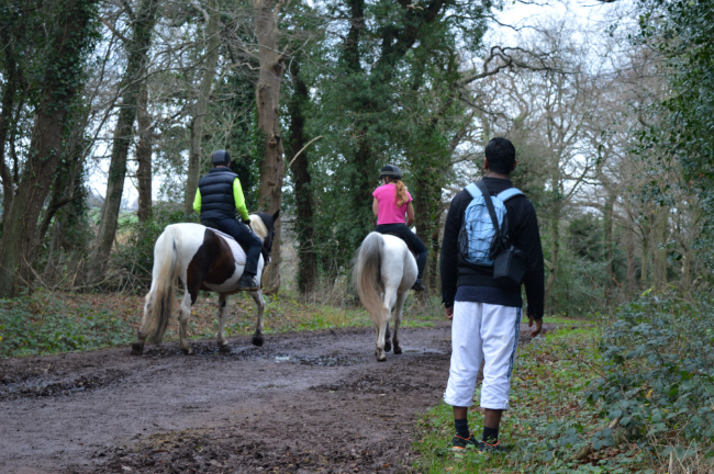 Horse riding in Epping Forest
