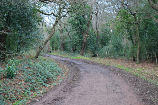 Epping Forest, Greater London