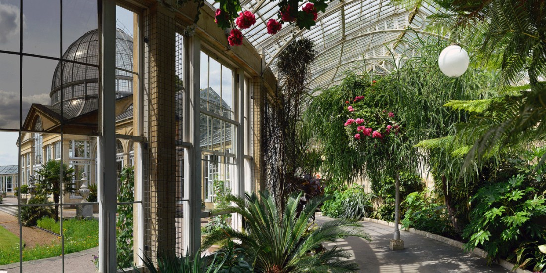 Great Conservatory at Syon House