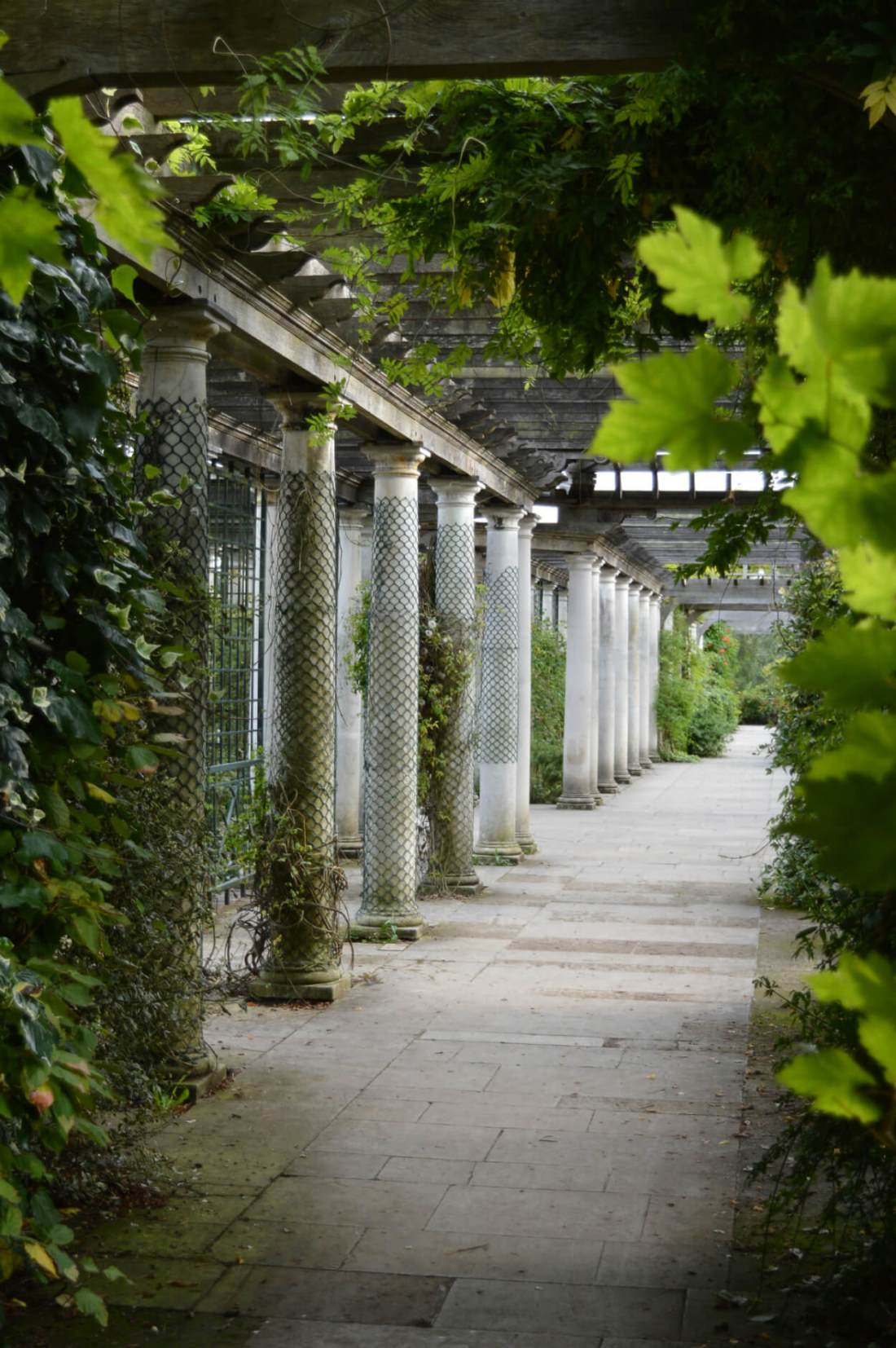 Hampstead Hill Garden and Pergola
