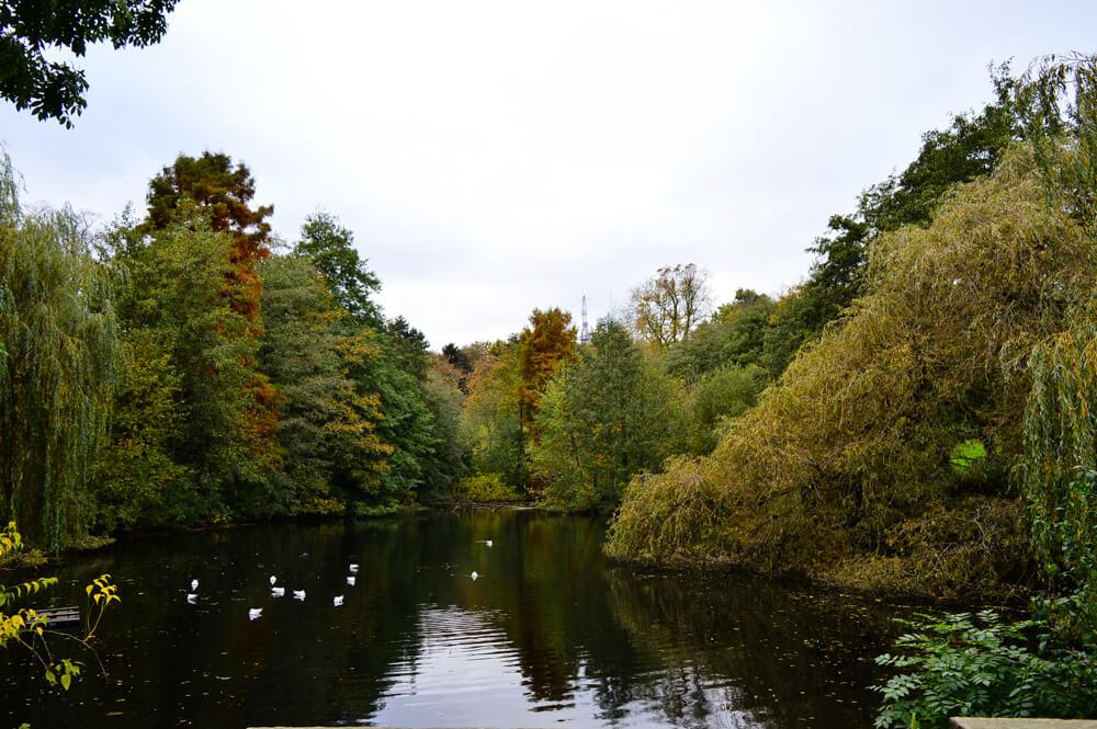 The lake at Waterlow Park, Hampstead, London